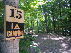 Our Forest Campground is our most popular accommodations with beautiful and private campsites nestled among the trees.