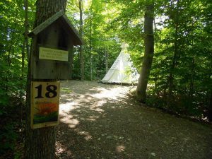 Tipi accommodations are in our forested camping area.